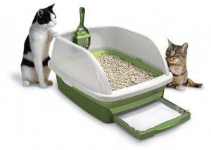 پتریزو | فروشگاه اینترنتی گربه|آرایشگاه حیوانات|بهترین فروشگاه گربه|فروش گربه Best-Cat-Litter-Reviews-1-1024x730-300x214 نکاتی برای آموزش گربه آموزش گربه ها