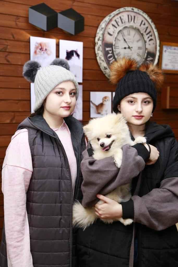 پتریزو | فروشگاه اینترنتی گربه|آرایشگاه حیوانات|بهترین فروشگاه گربه|فروش گربه -و-نیکا-فقانی آرایشگاه حیوانات