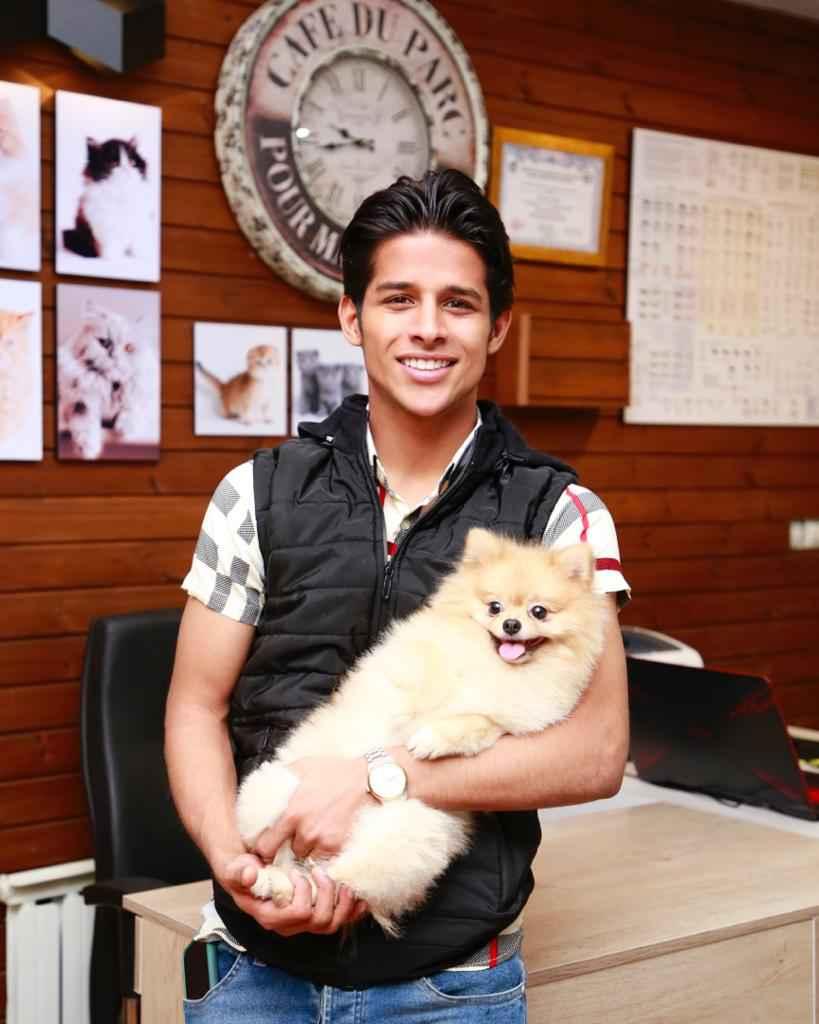 پتریزو | فروشگاه اینترنتی گربه|آرایشگاه حیوانات|بهترین فروشگاه گربه|فروش گربه -قايدی آرایشگاه حیوانات