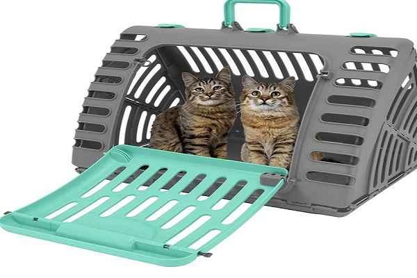 پتریزو | فروشگاه اینترنتی گربه|آرایشگاه حیوانات|بهترین فروشگاه گربه|فروش گربه 113-1 آموزش ها و مقالات