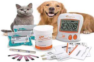پتریزو | فروشگاه اینترنتی گربه|آرایشگاه حیوانات|بهترین فروشگاه گربه|فروش گربه -خوم-سگ-و-گربه-300x200 انجام یک منحنی گلوکز خون برای سگ دیابتی خود راهنمای نژاد های گربه ها سلامتی و بهداشت سگ ها سلامتی و بهداشت گربه ها نگهداری و آشنایی با گربه ها قند خون گربه قند خون سگ روش تزریق انسولین به سگ روش تزریق انسولین تزریق انسولین به گربه تزریق انسولین انسولین
