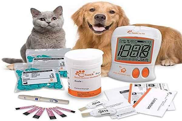 پتریزو | فروشگاه اینترنتی گربه|آرایشگاه حیوانات|بهترین فروشگاه گربه|فروش گربه -خوم-سگ-و-گربه آموزش ها و مقالات